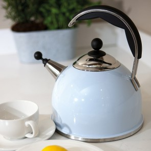 AGA Stainless Steel Whistling Kettle Duck Egg Blue
